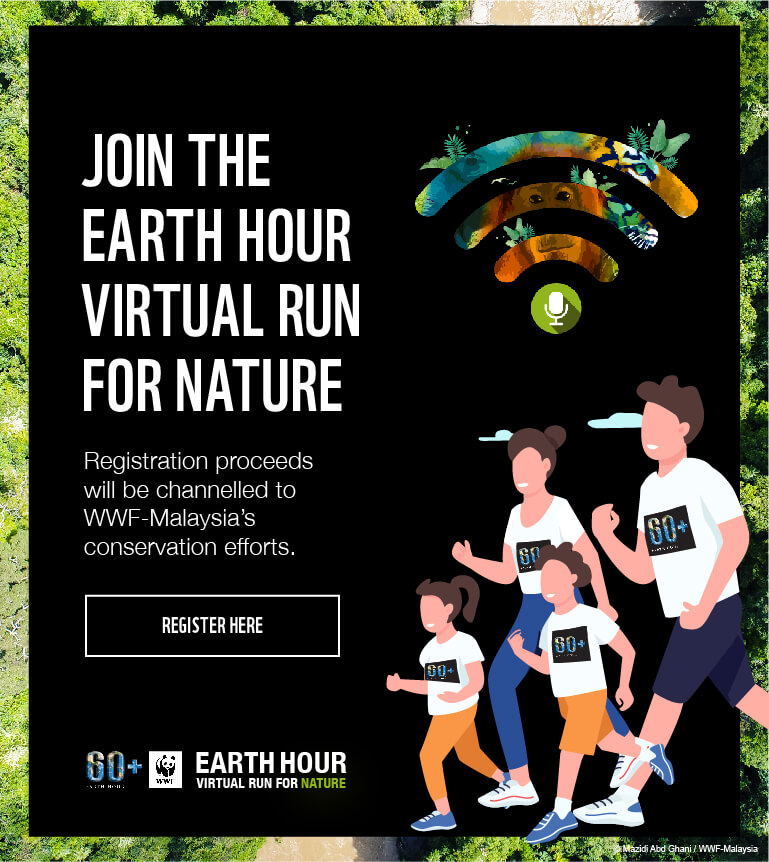 EARTH HOUR VIRTUAL RUN